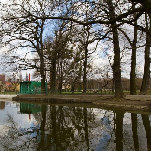 Do konce října lze žádat o granty, které pomáhají do měst vrátit zeleň a vodu