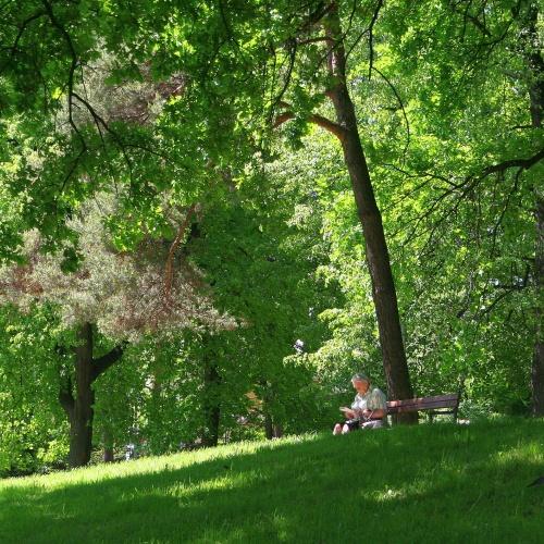 Den parku: budete překvapeni, co Zámecký park může nabídnout